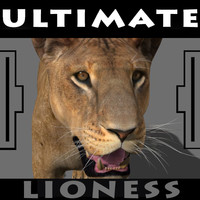 The Ultimate Lioness