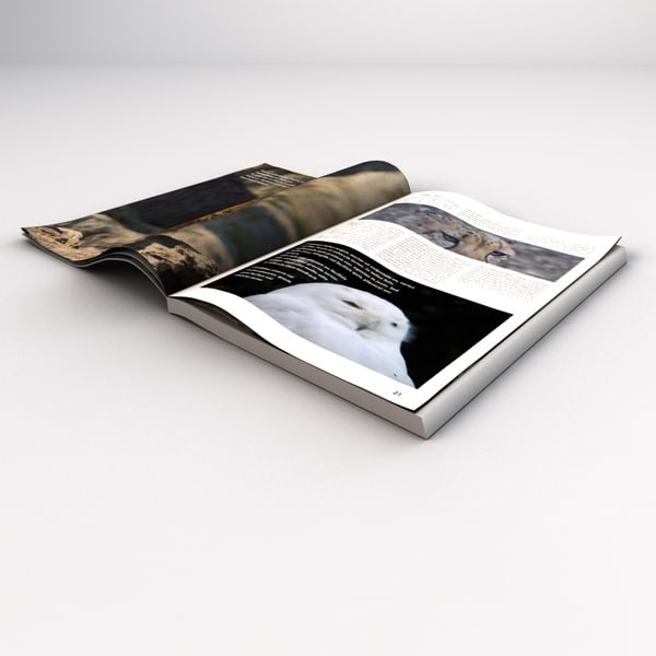 3d open magazine book model - Opened Magazine Book... by tdubic