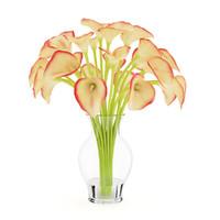 calla lilies vase