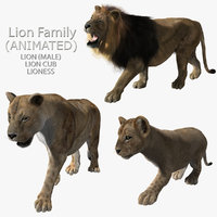 lions family fur animations ma