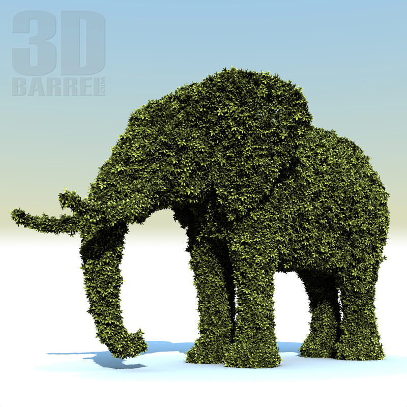 hedge_elephant_0000.jpg