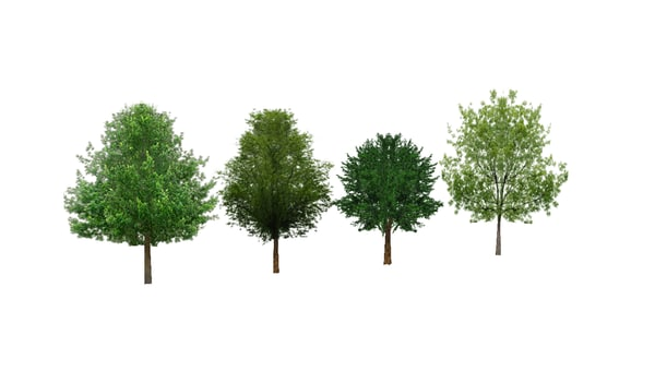 pack trees mobile obj - Mobile Resolution Tree Pack... by JamesArndt