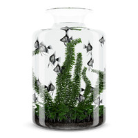 aquarium jar 3d model