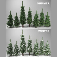 wild forest fir trees 3d model