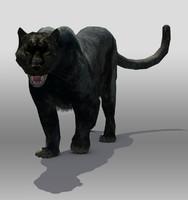 max black panther
