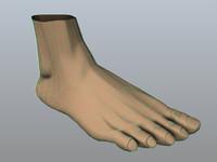 foot 3d obj