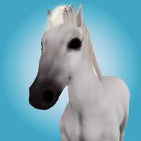 3d model of realistic horse