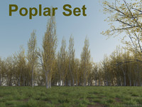 3dsmax poplar tree set