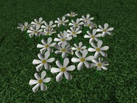 patch flowers 3ds free