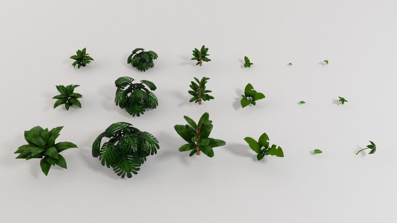 jungle plants 001.jpg