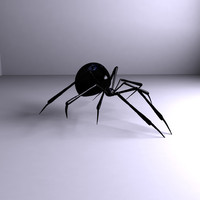 spider video insect 3d model