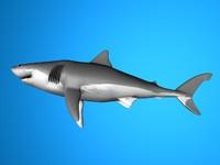 3d c4d shark