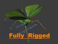 c4d11 cricket 3d model
