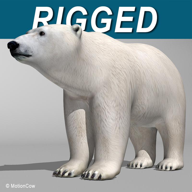 Polar_Bear_AA.jpg