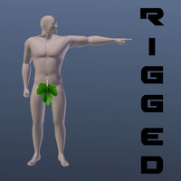 3d male muscular body base mesh
