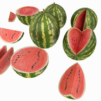 Melon Fruit Cutted Piece Table Kitchen Dinnig Room Detail Prop Dinner Watermelon