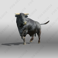 Black Angus 3D models