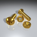 Brass Screw 3D models