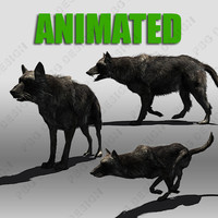 Black Wolf Animated