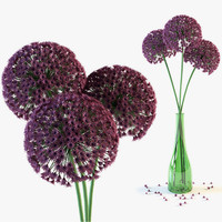 3d model allium flowers vase