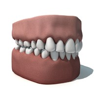 3ds max teeths gums