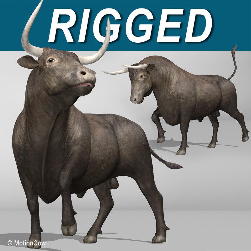 Bull_AA.jpg