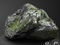 Rock with Algae