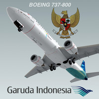 boeing 737-800 plane garuda 3d model