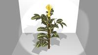 zebraplant 3d model
