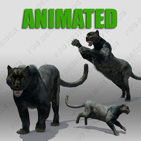 black panther animations 3d max