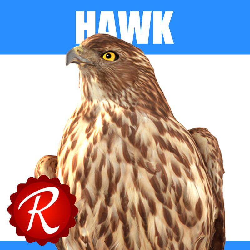 Hawk Thumbnail.jpg