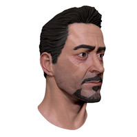 Robert Downey Jr Head