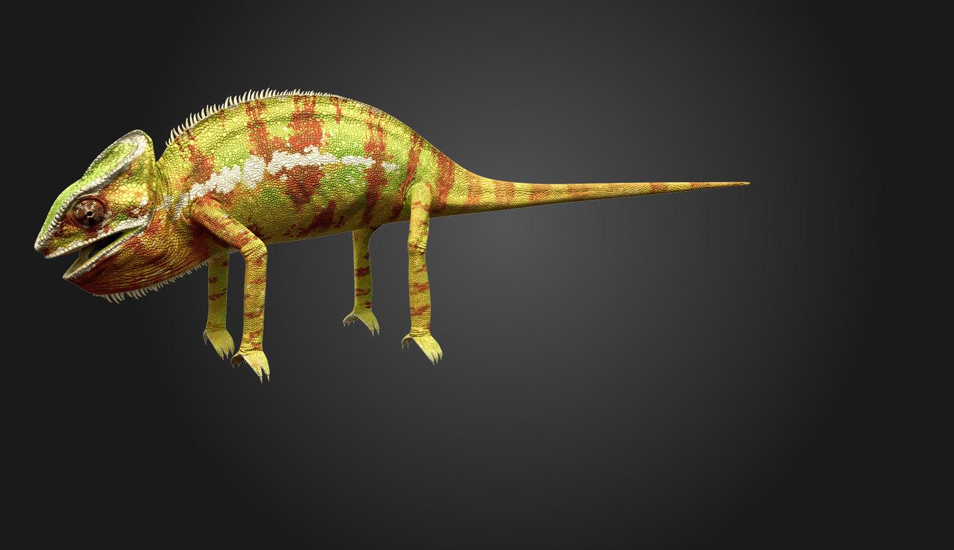 Chameleon0005.jpg