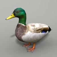 mallard duck 3d 3ds