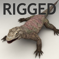 Monitor lizard rigged
