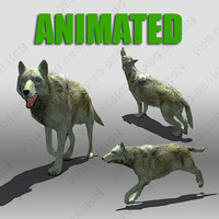 3ds max timber wolf animations