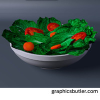 bowl salad 3d 3ds
