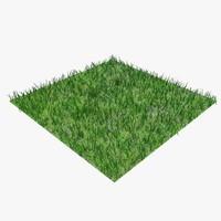 grass 03 c 3d model