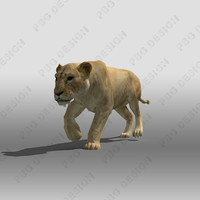 3dsmax lioness animations