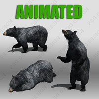 3ds max black bear animations
