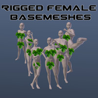 pack female base meshes 3d model