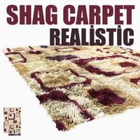 shag carpet model