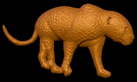 3d model leopard -