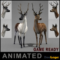 deer ged animations 3d max