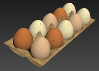 3d model eggs box carton