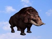 free max model boar