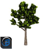3d model tree leaf