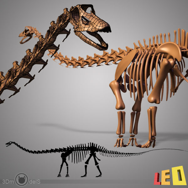 Dino skeleton diplodocus separate 3d 3ds - Dinosaure diplodocus ...