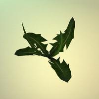 3d model dandelion plant