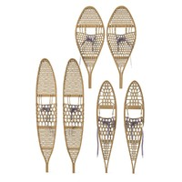 3d snowshoes snow shoe model
